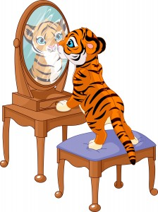 The tiger in the mirror