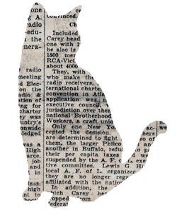 cat newspaper