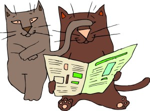 cats-newspaper