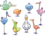 Not just for the Birds: April's Stereotype Sunday theme will be Avians