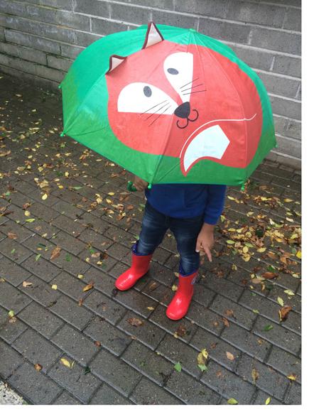 ombrello volpe