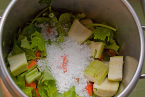 2012-01-22_145949-2-dado-vegetale3