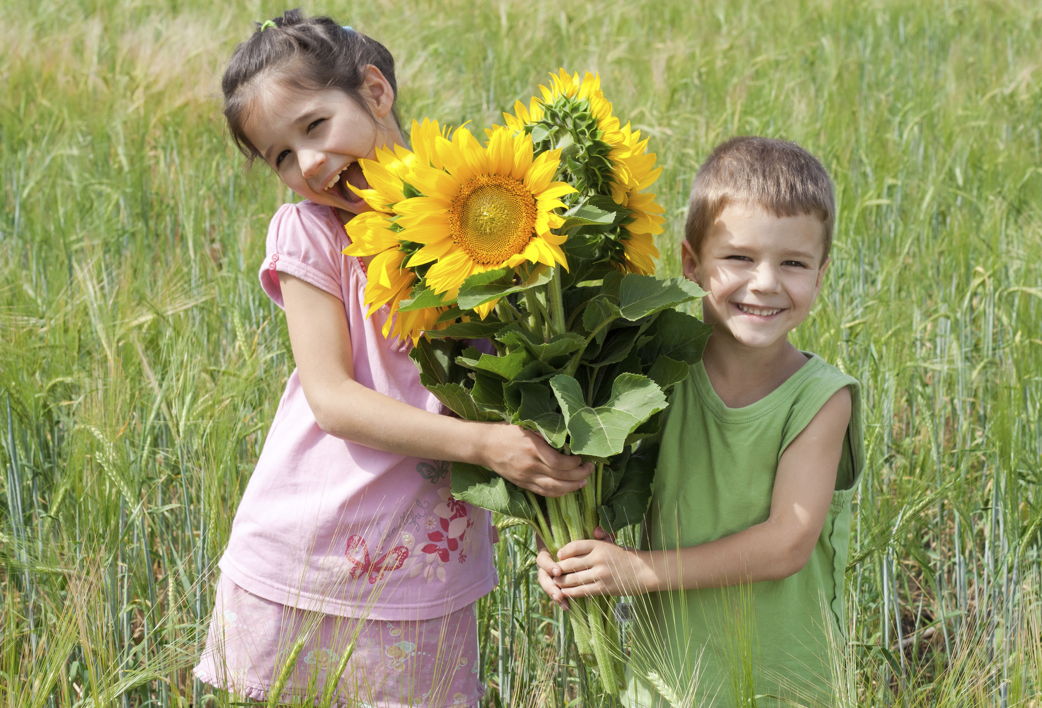 Two kids with sunflowers in a wheat field