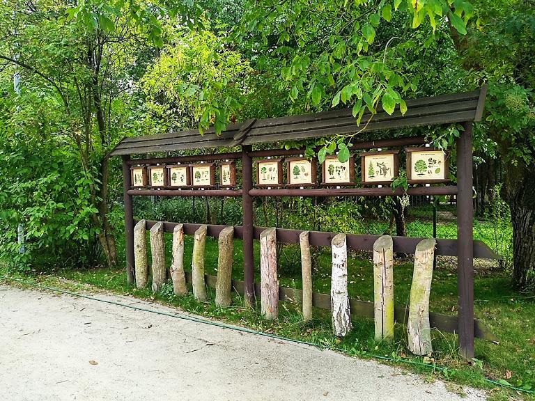 Centrum edukacji przyrodniczo-leśnej w Powsinie