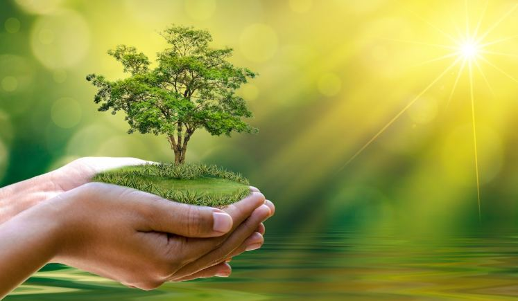 بعض التعاليم الدينيه التي تحث على الحفاظ على البيئه من التلوث