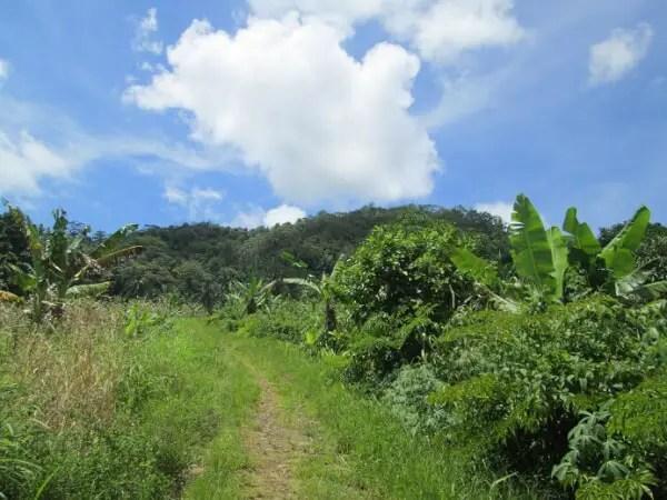 gunung tumpa manado_3