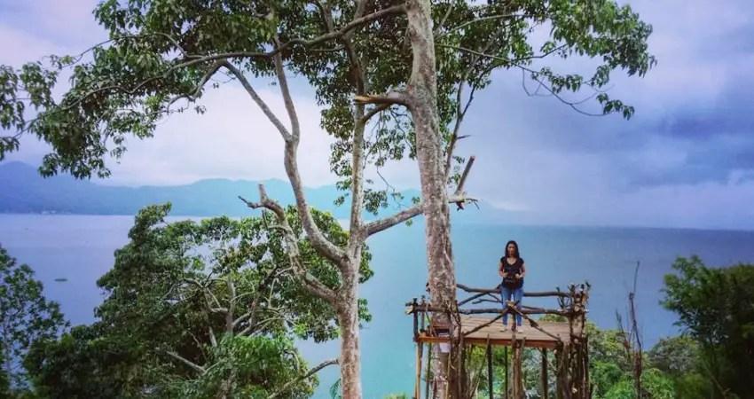 rumah pohon urongo tondano-manado