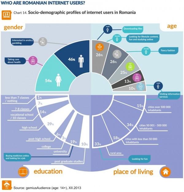 Infografic Utilizatori Romani de Internet
