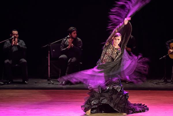 Flamenco-de-5-stele-019-foto-Paul-Baila