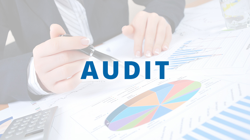 Project Audit | Business Consulting