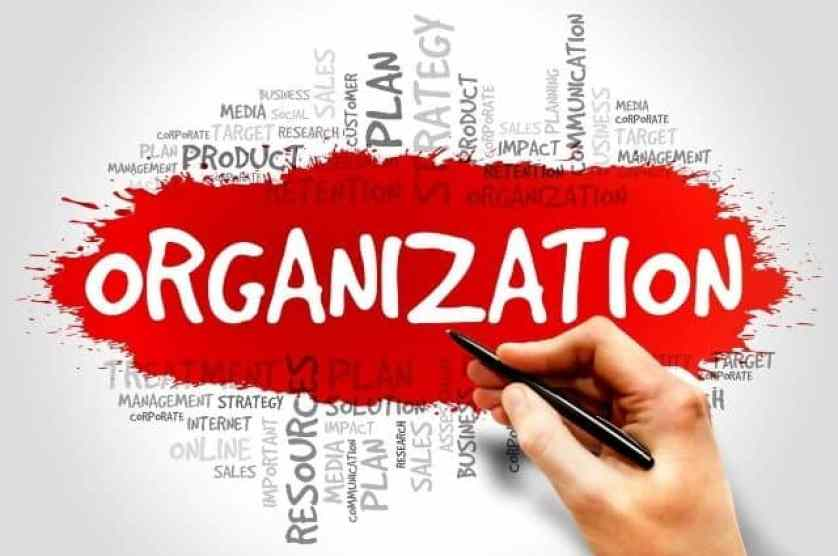 Organization and Management - Write Traditional Business Plan - Guidehut.in
