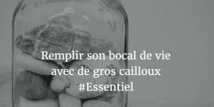 bocal_vie_remplir_cailloux_priorites_sens