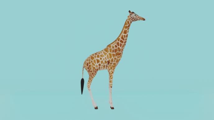 Giraffe - Blender - Eevee