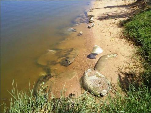 Lagune de Bè bon - Extraction de sable dans la lagune de Bè: les riverains se plaignent des dégâts