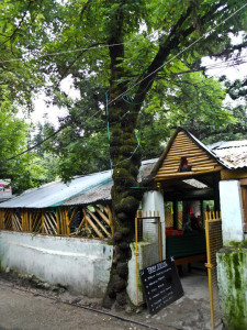 Restaurant Old Manali
