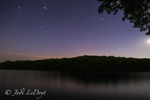 Star lit night taken by Jodi LeDoyt