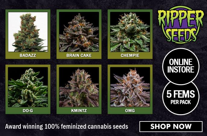 Slider - Ripper Seeds