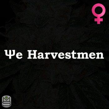 The Harvestmen – PeachSmash