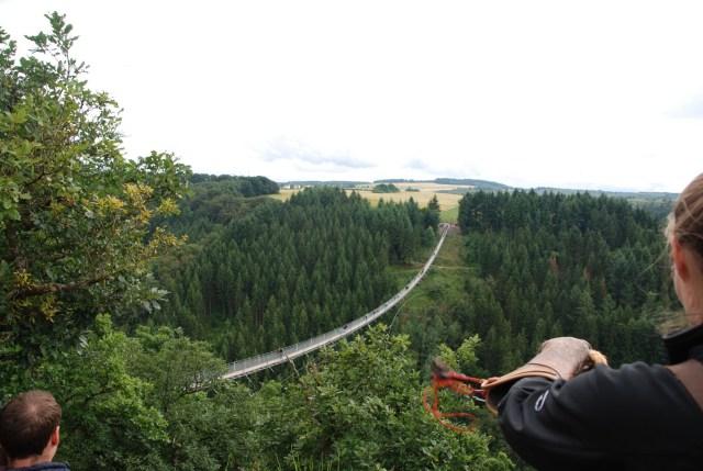 Hunsrück, Suspension bridge
