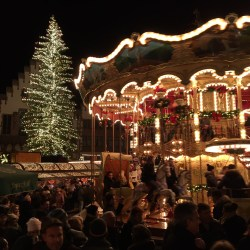 Germany's largest Christmas tree in Frankfurt on European Motorhome Tour to Europe's Best Christmas Markets
