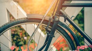 bike_im_herbst
