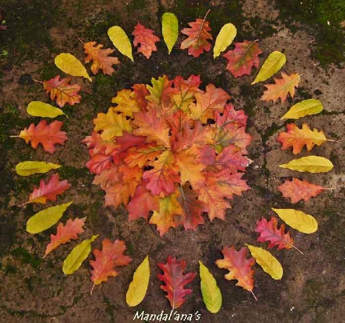 Ana Castilho mandala-di-foglie-rosse--mandala-da-colorare