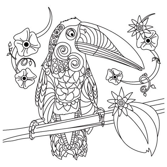 Mandala de Tucán