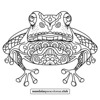 mandala de rana