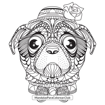 Perro Pug estilo Zentangle Art