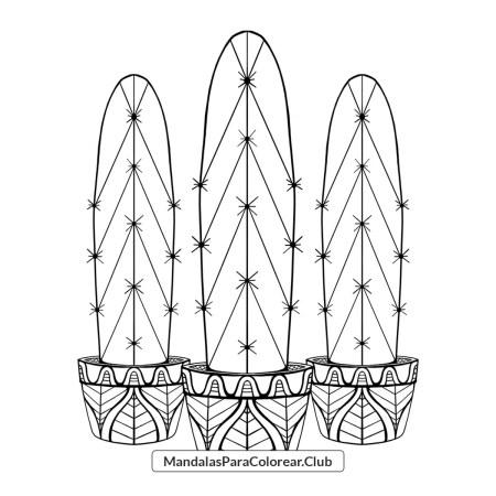 Cactus Zentangle para Colorear en PNG y JPG