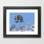"""Stone Frog"" Mandelbulb photograph by Matthew Haggett, 2012. 3D Fractal Art. Framed print."