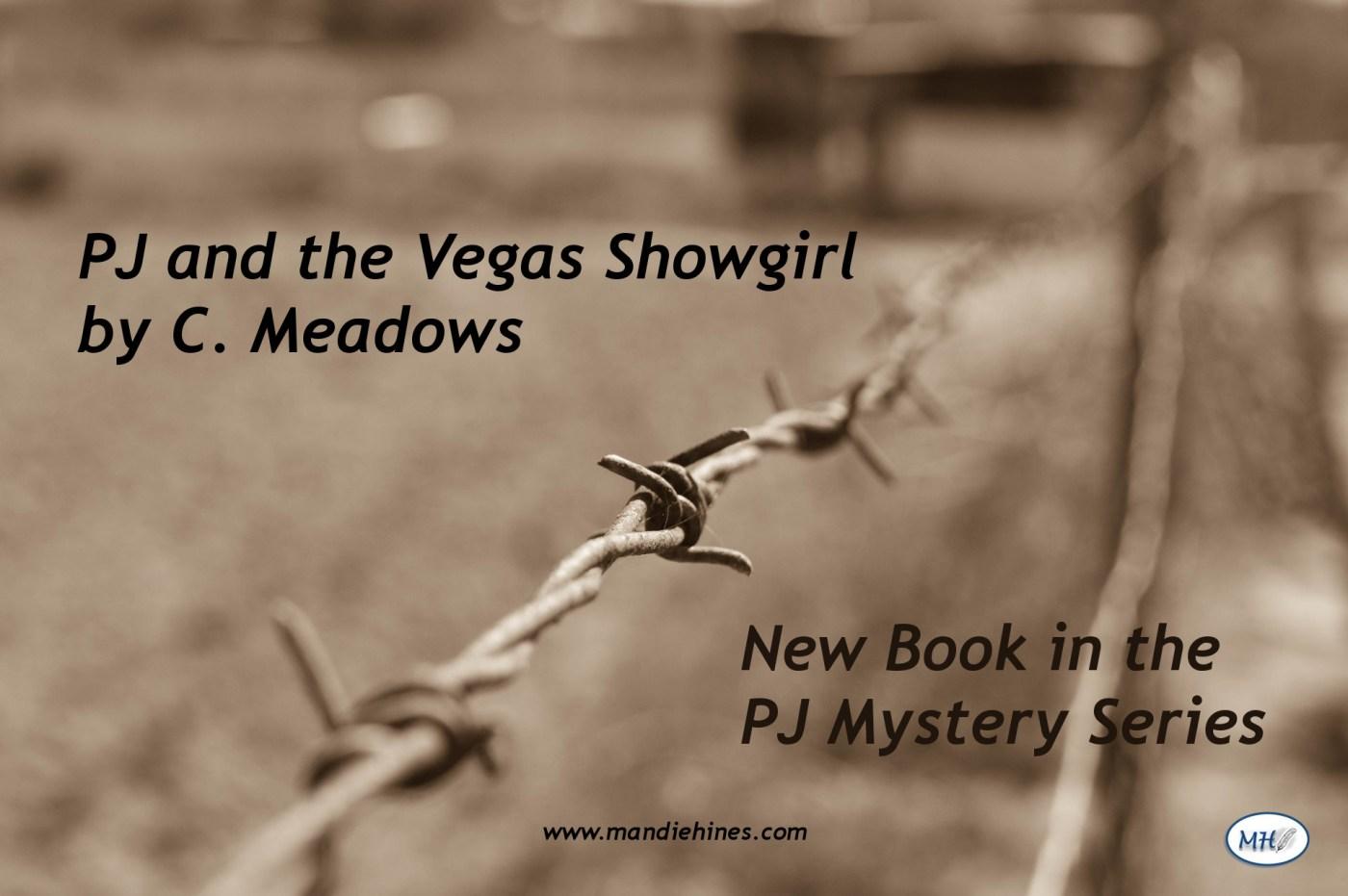 Author Spotlight: C  Meadows – Mandie Hines Author