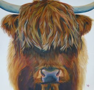 Bear - Highland bull