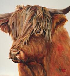 Jura - Highland cow