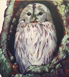 Owen the Owl