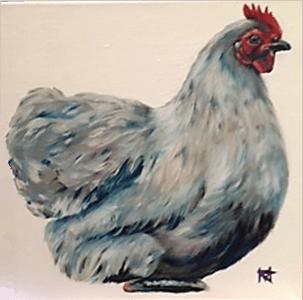 A white hen