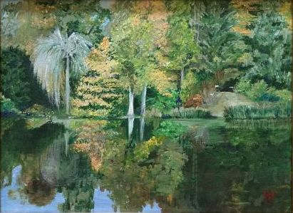Wooded scene with reflection in water