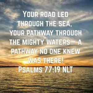 pathway through the waters, peace and hope