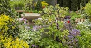 A Modern Apothecary Show Garden