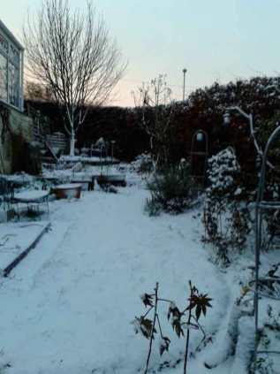 Snow December 2012