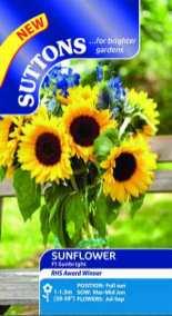 Sunflower F1 Sunbright