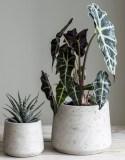 Idyll Home concrete pot set