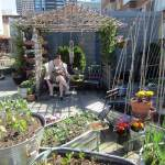 Cool summer products for gardeners