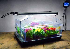 Standard Vitopod Single Layer with Lights