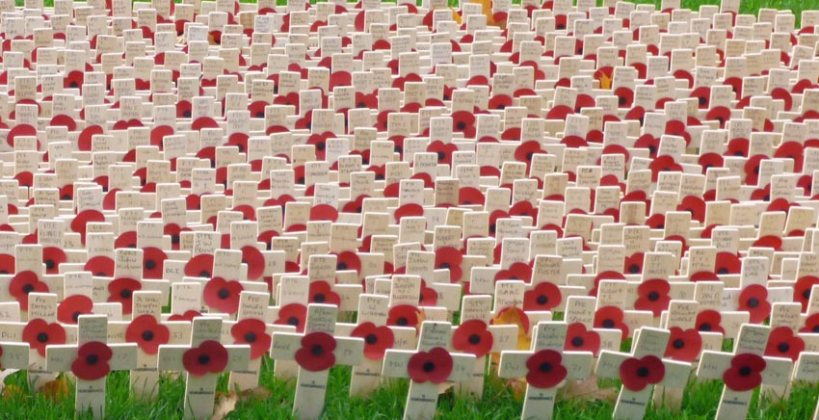 Each cross represting a lift lost... The Remembrance poppies