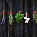 Not-so-secret ingredients... herbs and garlic