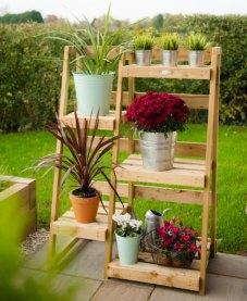 Plant ladder display. Picture; Forest Garden