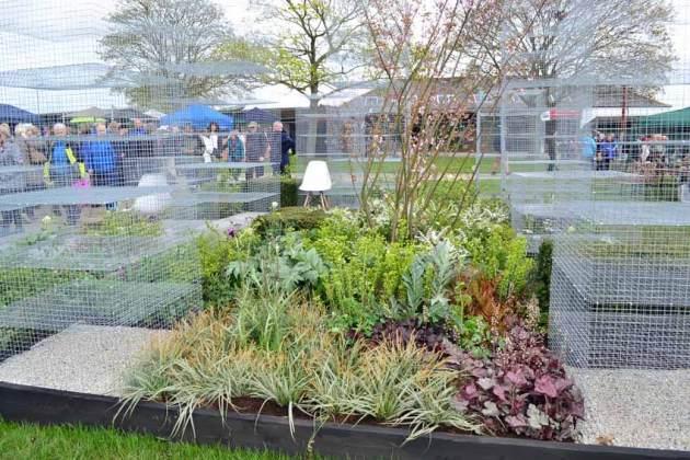 The Garden of Translucence by Colour Your Garden