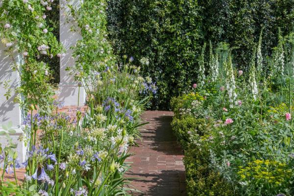 The Trailfinders Garden. Picture; RHS/Neil Hepworth