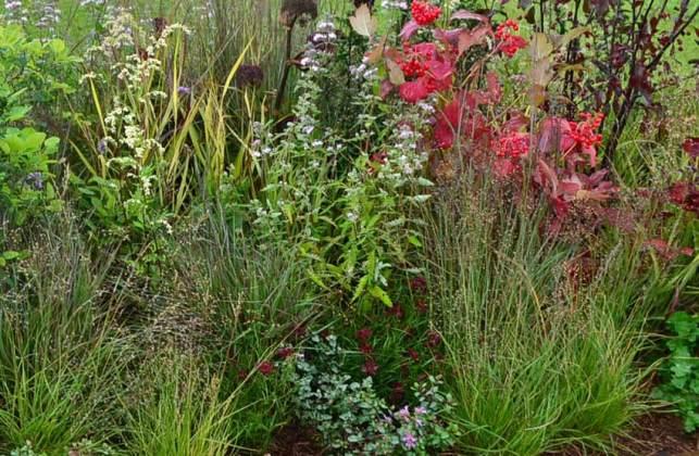 Seasons of Mists, Rachel Forbes Landscape Design; Silver-gilt